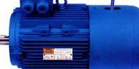 motor-yej-freno-b3[1]